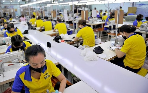 5 PRODUCING ANTIBACTERIAL CLOTH MASKS FOR EXPORT TO FRANCE